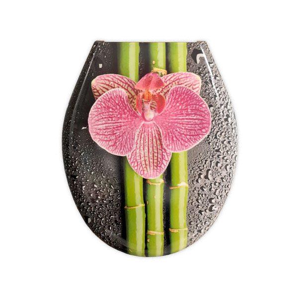 Sjedalo Sintagma Orchidea